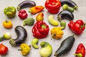 Trendy Ugly Organic Vegetables. Assortment Of Fresh Pepper, Eggplant, Cucumber, Tomato, Pumpkin poster