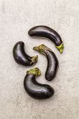 Trendy Ugly Organic Vegetables. Fresh Baby Eggplants poster