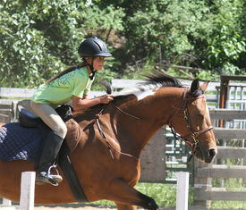 stock photo of horse girl  - girl jumping her horse during an Engish riding equestrian event - JPG
