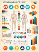 picture of internal organs  - Medical infographics elements - JPG