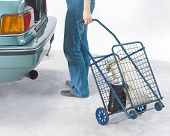 pic of movable  - woman pulling a movable steel basket to the car - JPG