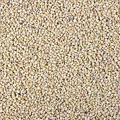 stock photo of fenugreek  - Texture of yellow and pink dry fenugreek seeds - JPG