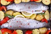 picture of brook trout  - Two marinated rainbow trout with red pepper potato and lemon - JPG
