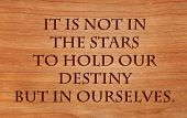 image of william shakespeare  - It is not in the stars to hold our destiny but in ourselves  - JPG