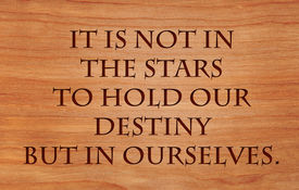 pic of william shakespeare  - It is not in the stars to hold our destiny but in ourselves  - JPG