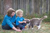 foto of kindness  - Teaching kindness to animals is an important parental lesson - JPG