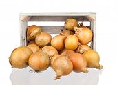 image of wooden crate  - bunch of freshly harvested onions in a wooden crate - JPG