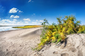 stock photo of barchan  - Sandy dune near Wooden lake in the desert of Kazakhstan Central Asia - JPG