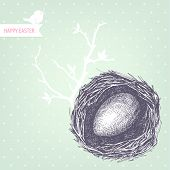 pic of bird-nest  - Vector vintage design for you Easter card or invitation with hand drawn bird nest illustrations - JPG