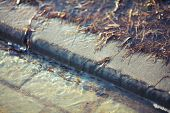 picture of flood-lights  - Water flows over the curb into the street as a result of spring flooding - JPG
