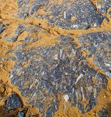 picture of sahara desert  - old fossil in the desert of morocco sahara and rock stone sky - JPG