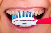 foto of toothbrush  - Close up photo of tooth cleaning with toothbrush - JPG