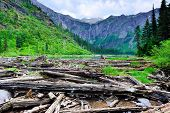 picture of avalanche  - view of the Avalanche lake in Glacier National Park - JPG