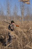 stock photo of shotgun  - Hunter loocking wild goose extreme sport shotgun - JPG