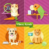 image of petting  - Icon set with home animals silhouettes of pets on multicolor stylish banners - JPG