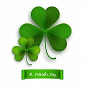 image of saint patrick  - Saint Patricks Day vector greeting card realistic shamrock leaves isolated on white - JPG