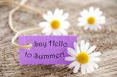 pic of saying  - Purpel Label With White Ribbon And English Life Quote Say Hello To Summer With Three White Marguerite Blossoms On Wooden Background - JPG
