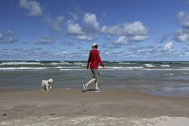 pic of cockapoo  - Woman Walking on a Lake Huron Beach with a Small White Dog  - JPG