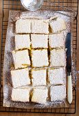 pic of icing  - Tangy lemon squares with icing sugar on rack - JPG