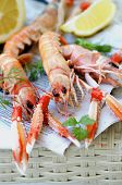 picture of animal eyes  - Delicious Grilled Langoustines with Lemon and Parsley on Newspaper closeup on Wicker background - JPG