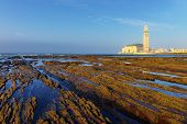 stock photo of tide  - Detail of bare rocks because of low tide at casablanca morocco - JPG