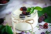 picture of mulberry  - sweet delicious home made yogurt with mulberry - JPG