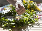 stock photo of thread-making  - Woman Making a Swedish Midsummer Head Creation with flowers in the background - JPG