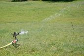 picture of sprinkler  - Sprinkler splashing with water on lawn in garden - JPG