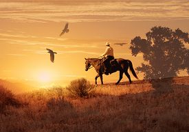 stock photo of suspension  - A hot isolated photo of a cowboy riding his horse in a meadow with birds hovering above him - JPG