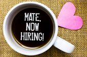 Text Sign Showing Mate, Now Hiring Motivational Call. Conceptual Photo Workforce Wanted Employees Re poster