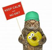 The Cat  In A Green Capholds A Funny Sign  Keep Calm And No Diet  And A Big Bitten Yellow Donut. W poster
