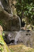 picture of tomas  - A waterfall in Las Escambia Park in St - JPG