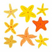 Starfish Vector Collection Design, Starfish Collection, Starfish Vector Set poster