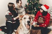 Cute Funny Dog Looking In Front And Happy Stylish Family In Festive Sweaters Having Fun At Christmas poster