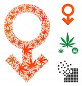 Impotence Symbol Composition Of Weed Leaves In Various Sizes And Color Shades. Vector Flat Ganja Lea poster