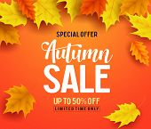 Autumn Sale Vector Banner Background With Fall Leaves Elements, Autumn Typography And Discount Text  poster