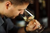 Close Up Of Sommelier Man Sniffing White Wine Poured In Glass, Degustation Process Of Man Trying To  poster