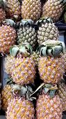 A Lot Of Pineapple (ananas Comosus) In The Market poster