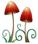 stock photo of crimini mushroom  - illustration of red mushrooms on a white background - JPG