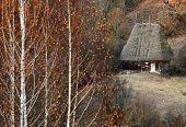 Постер, плакат: Древняя деревня дом в горах Trascau Румыния