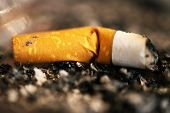 Smoked Cigarette - shallow depth of field