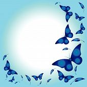 picture of blue butterfly  - Vector illustrations with blue gradient color applied - JPG