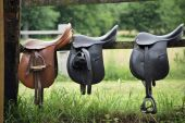 stock photo of reign  - Three leather saddles ready to put on the horseback - JPG