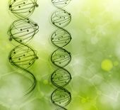 picture of microscopic  - DNA molecules on the natural background - JPG