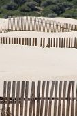 stock photo of tarifa  - Wooden fences on deserted beach dunes in Tarifa Spain