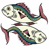 picture of pisces  - pisces astrological zodiac sign - JPG