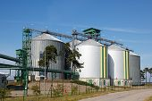 picture of biogas  - Multiple white biofuel tanks with green and yellow stripes - JPG