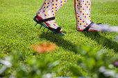stock photo of aerator  - Woman wearing spiked lawn revitalizing aerating shoes - JPG