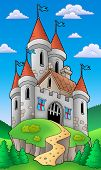 Medieval Castle On Hill poster