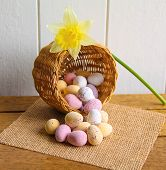 foto of daffodils  - Pastel sugared Easter eggs in a wicker basket with a cheerful daffodil - JPG